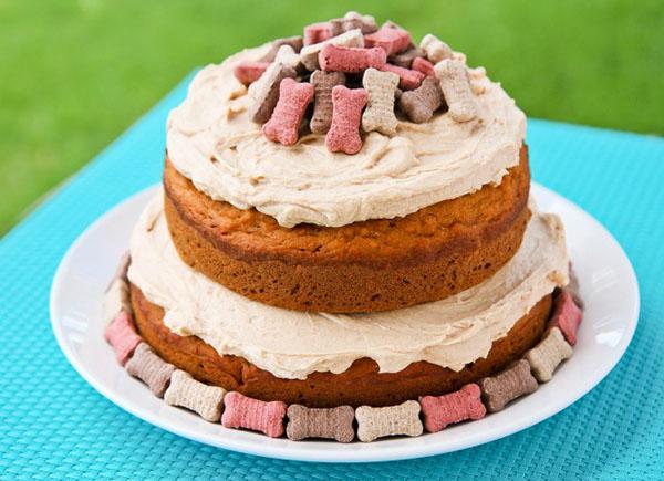 9 Best Dog Birthday Cake Recipes