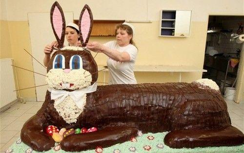 Biggest Cake Ever