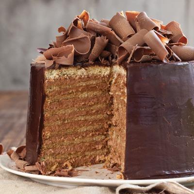 Chocolate Chicory Doberge Cake